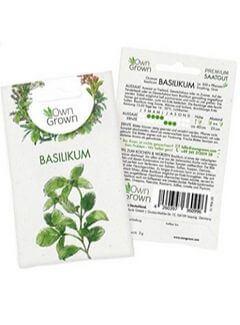 Kräuter pflanzen Basilikum